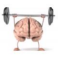 Мозъчна функция