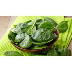 Безопасно отслабване: богати на белтък растителни продукти – 1 част